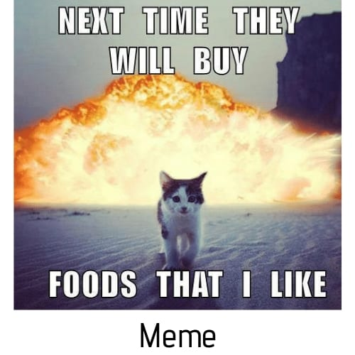 cat food meme